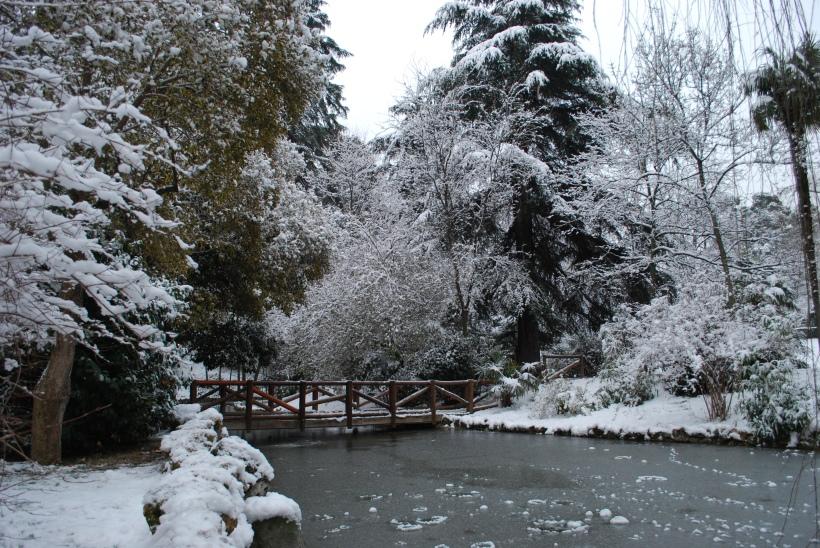 jardines_del_buen_retiro_madrid_07
