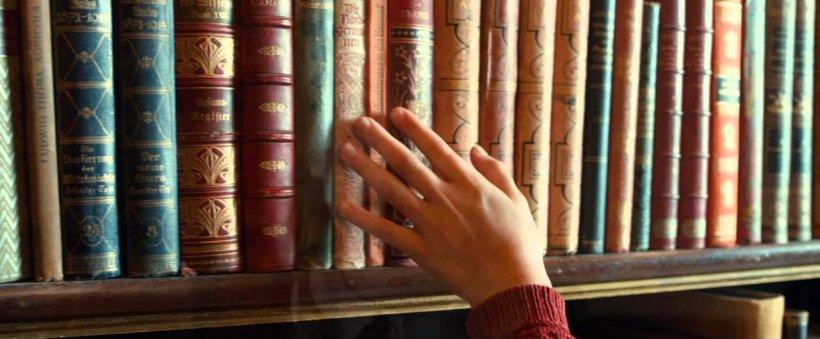libros-ladrona