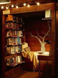 this-is-what-a-library-lovers-bedroom-looks-like-2